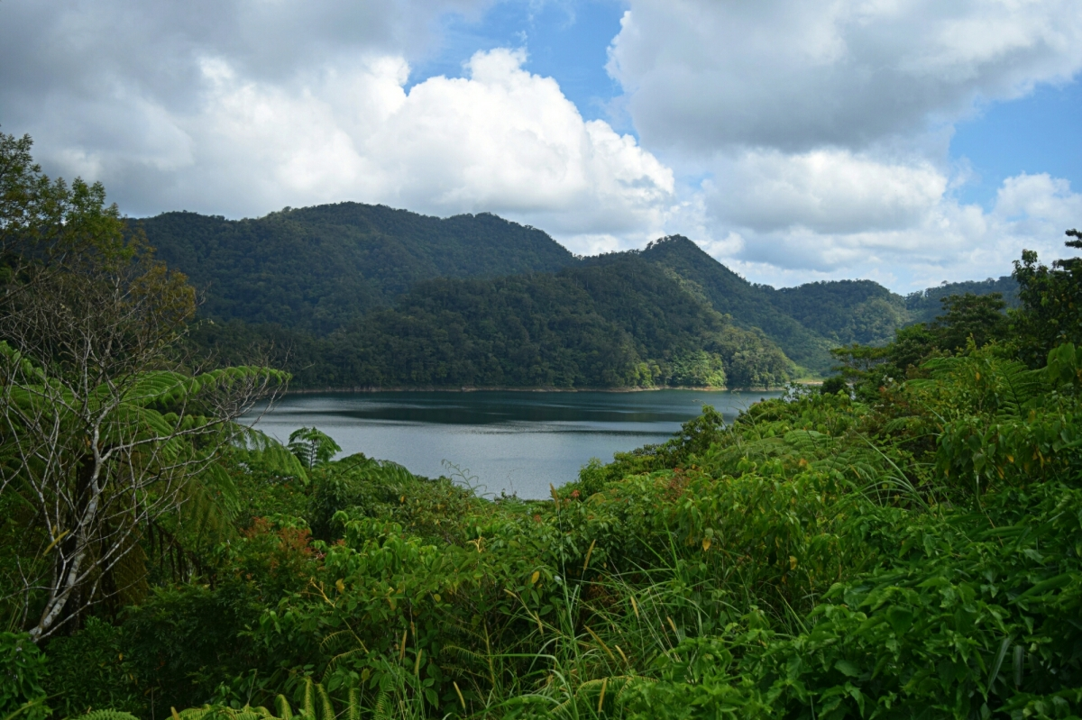 Balinsasayao Twin Lakes Natural Park: The cloistered natural beauty that provides tranquility.