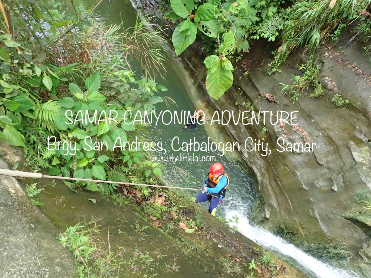 Samar Canyoning Adventure:   Challenging But Fun, And Will Require You To Conquer Your Fear Of Heights