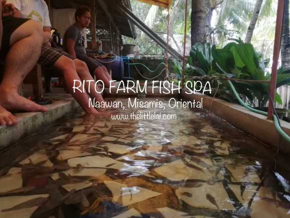 Rito's Farm: A Perfect Haven For Your Tiring Feet |