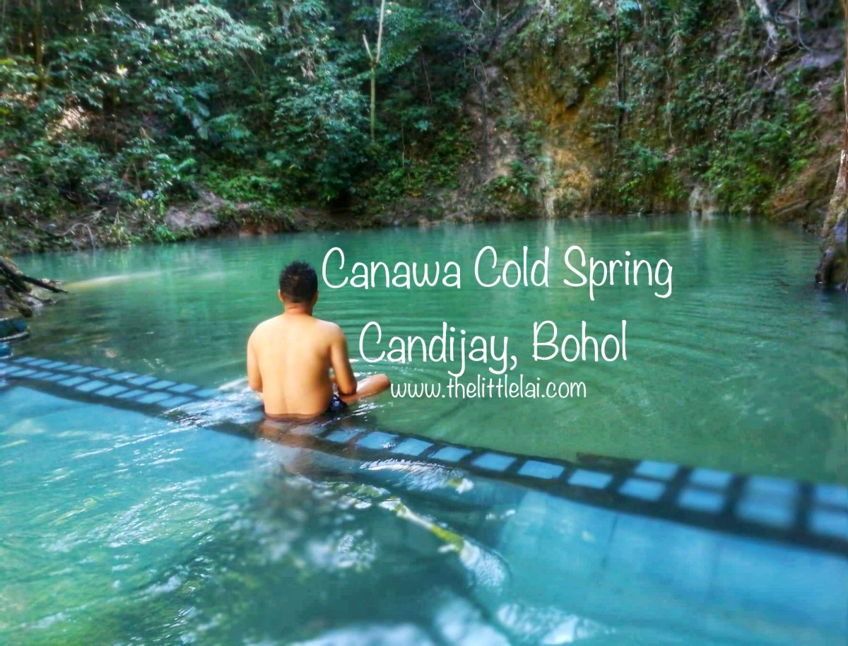 Canawa Cold Spring: Mysteriously Hiding In The Beautiful Lush Green Forest